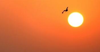 aurinko_luonto_sää_