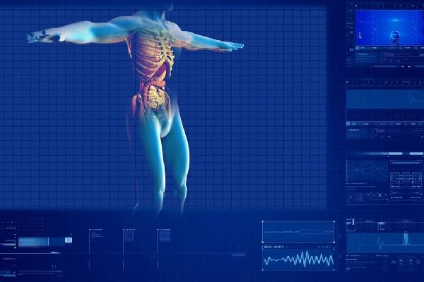 Keho Anatomia Ja Fysiologia